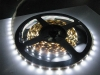 5050-Flexible-White-Non-Water-Proof-LED-Strip